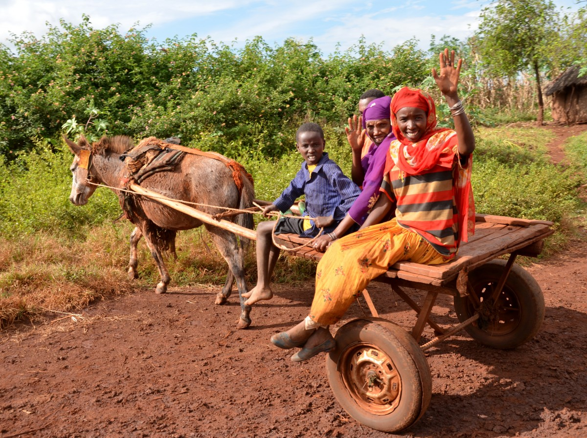 A group of three adults and a teenage boy from the Belo region of Ethiopia are sitting on a cart pulled by a mule. The two adult women are waving and smiling at the camera – Gymtopia.org